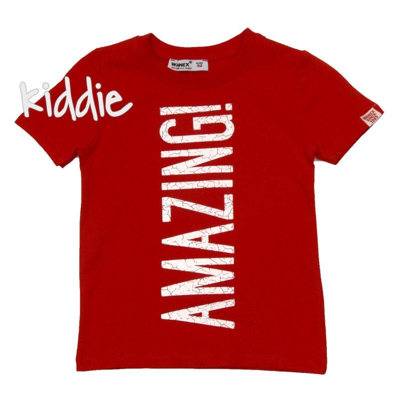 Детска тениска за момче Amazing, Wanex
